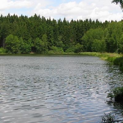 Rybník Horní Okrouhlík